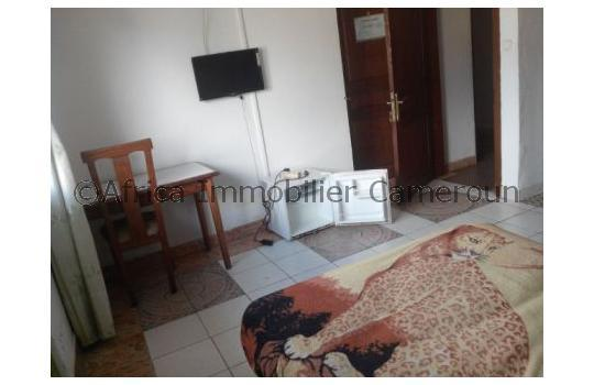 Appartement meubl 1 chambre douala bonapriso for Appartement meuble a douala